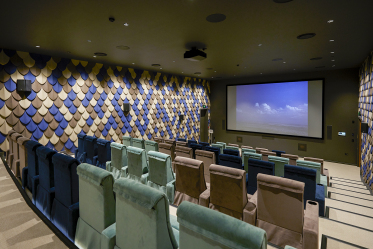 Clubhouse theatre 2